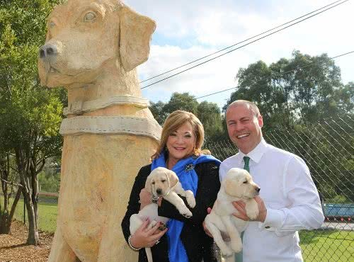Guide Dogs Victoria launches new platform
